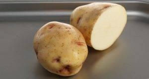 Картофель сорокодневка: описание скороспелого сорта и правильный уход