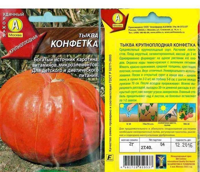 Тыква конфетка: описание и характеристика сорта, особенности выращивания и ухода