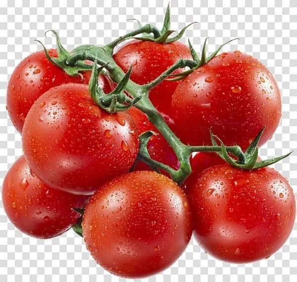 Рецепты томатного супа гаспачо