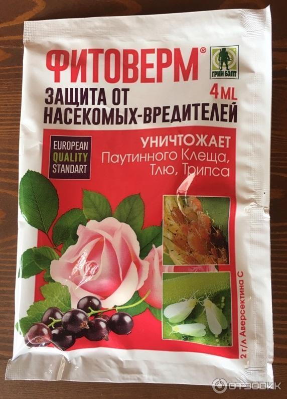 Как обработать клубнику после зимы от болезней и вредителей?
