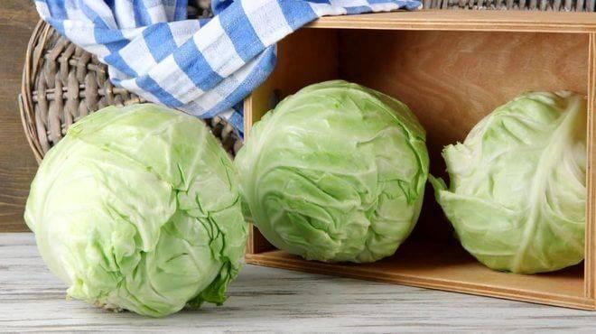 Виды удобрения для капусты: чем подкормить после высадки в грунт