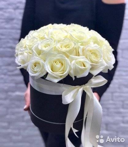 Самые ароматные и душистые сорта роз