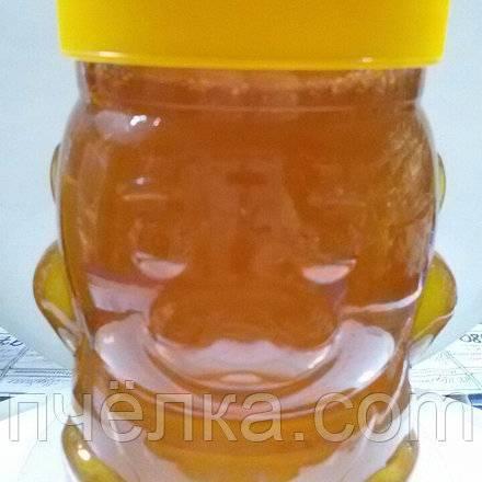Что такое дягилевый мед и чем он полезен для организма