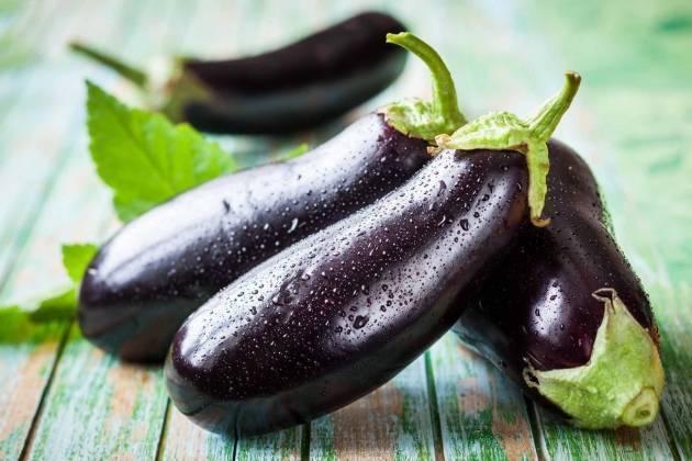 Баклажаны - выращивание и уход в открытом грунте, лучшие сорта