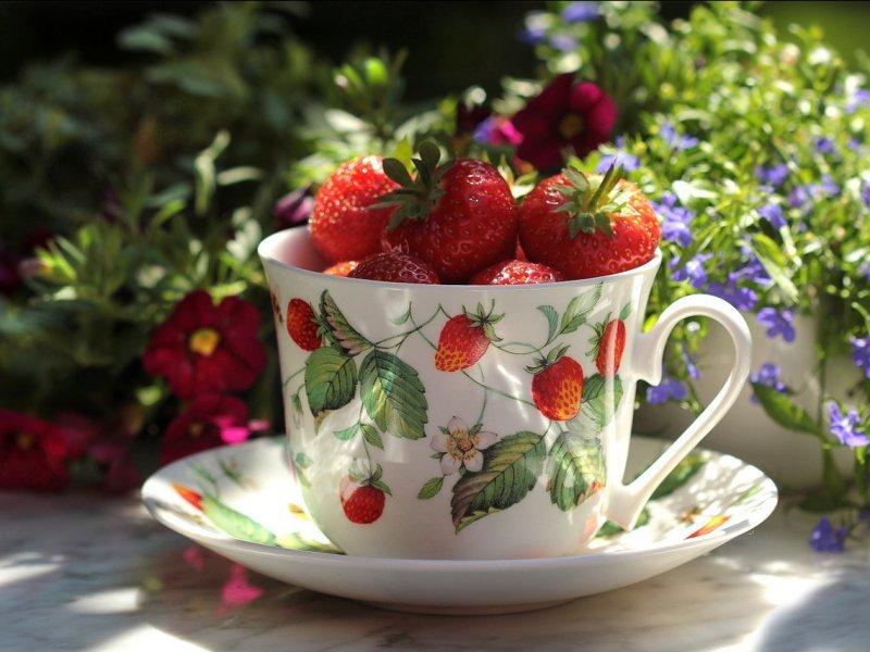 Клубника: польза и вред для здоровья, какие витамины содержатся в ягодах. калорийность клубники (+отзывы)