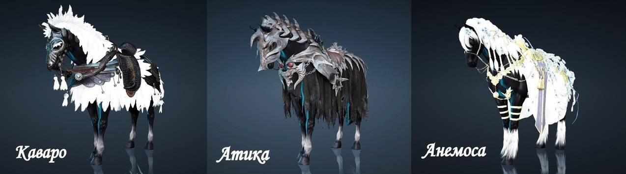 Упряжь лошадью красна: виды и строение сбруи