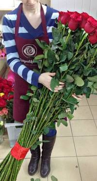 Розы дэвида остина: плюсы, минусы и популярные сорта