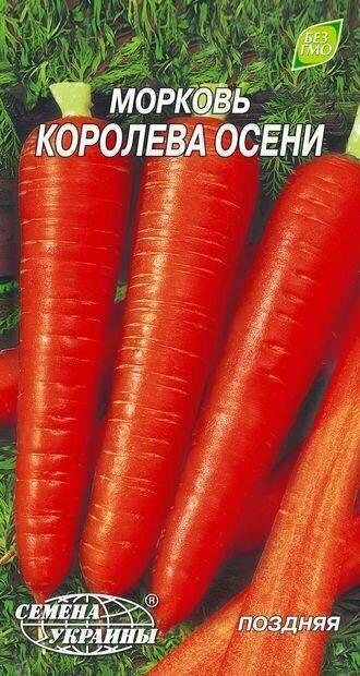 Все о моркови нииох 336: описание, выращивание, сбор урожая и другие нюансы