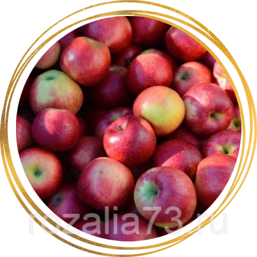 Основные характеристики и особенности выращивания яблони сорта «беркутовское»