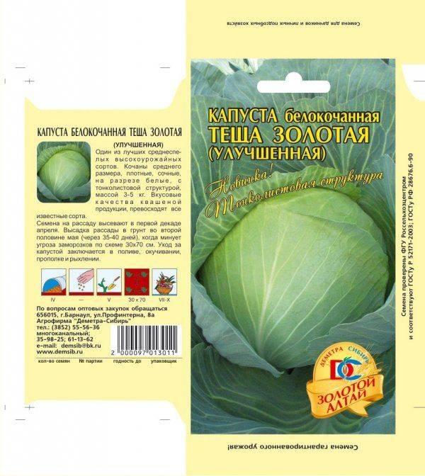 Описание и особенности выращивания кормовой капусты