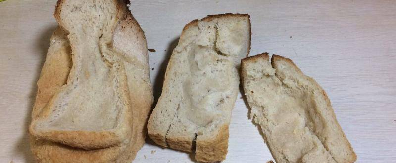 Болезни картофеля: фузариоз, фомоз, меланоз, кольцевая гниль