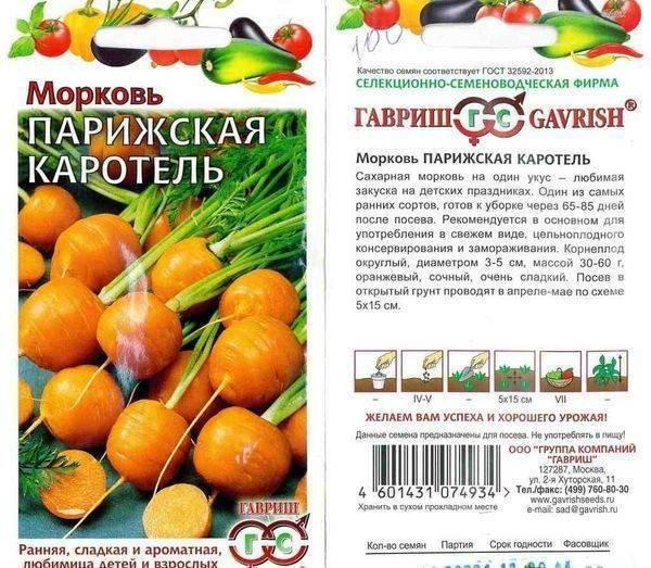 Лучшие сорта моркови для сибири