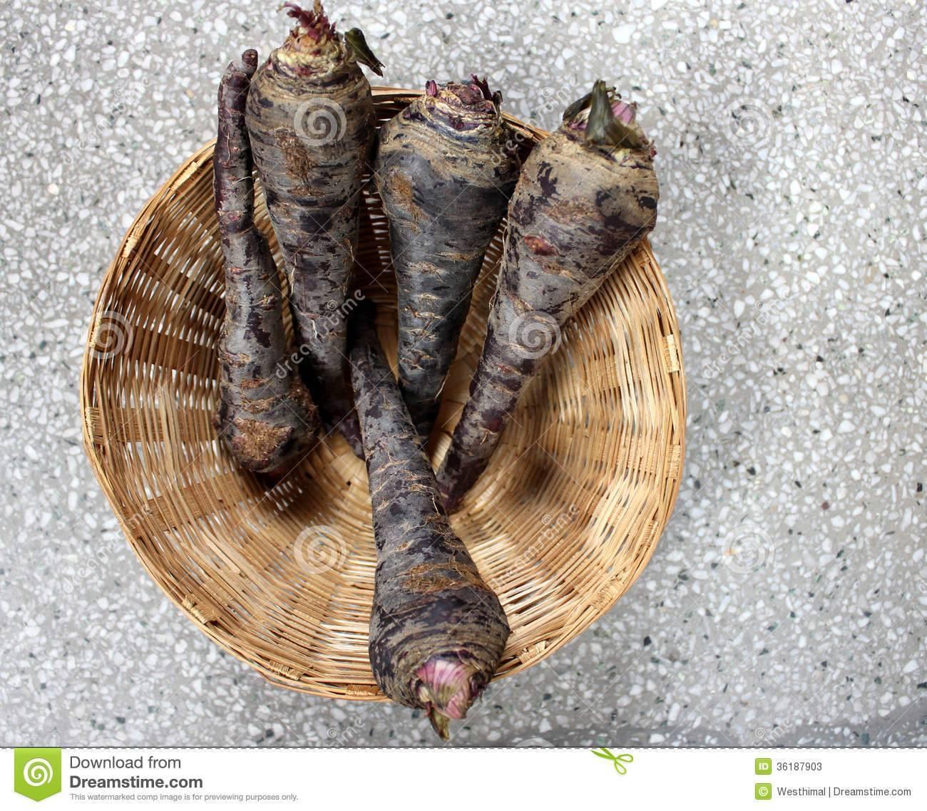 Как приготовить блюда с черной морковью