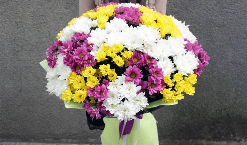 Как продлить срок свежести хризантем в вазах