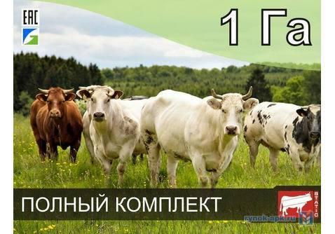 Как сделать кормушку для коров своими руками — рассматриваем все нюансы