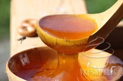 Дягилевый мед, полезные свойства и противопоказания, применение. всё про редкий мёд из дягиля