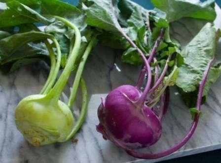 Капуста кольраби: описание, полезные свойства, особенности выращивания, как едят, рецепты
