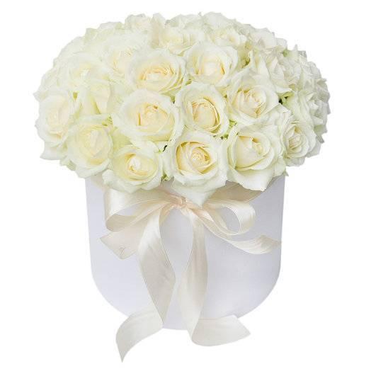Белые розы: фото, лучшие сорта с белоснежными лепестками, описание, правила сочетания с растениями, варианты использования видов с белыми цветками в декоре сада