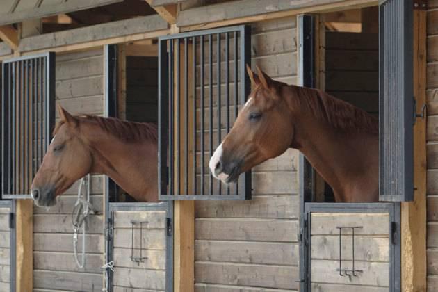 Сооружение загона для лошади, а так же конюшни, денников и стойла