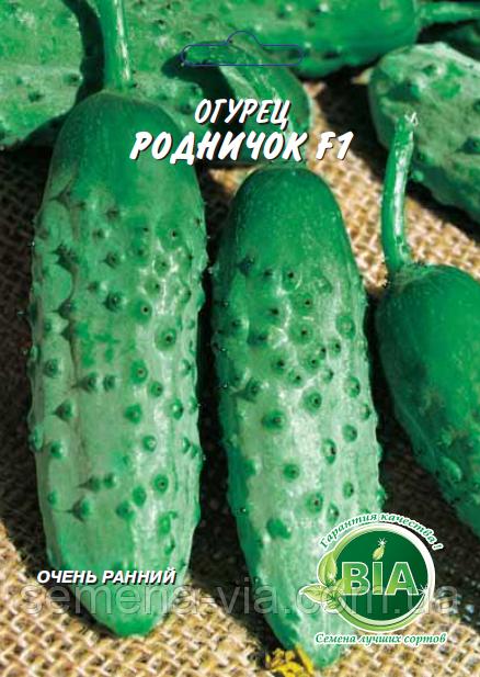 Описание и характеристика сорта огурцов родничок f1: посадка и уход
