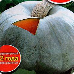 Лучшие сорта тыквы с фото и описанием