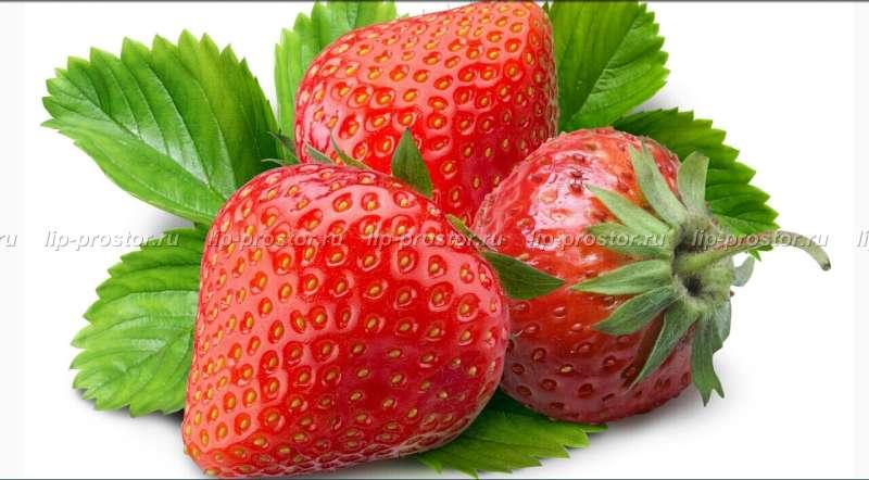 Агротехника выращивания клубники «машенька» — описание сорта, советы по посадке и уходу