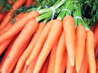 Как правильно сажать морковь для получения высокого урожая