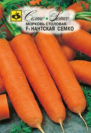 Морковь нантская — 4: характеристика и описание сорта