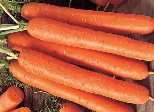 Топ-8 самых сладких сортов моркови для соков, салатов и пирогов