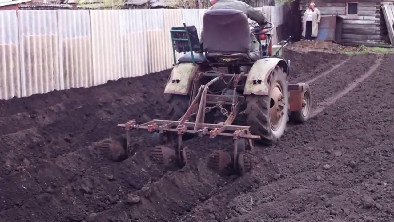 Особенности посадки картофеля под плуг вручную и мотоблоком