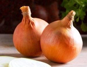 Как обработать лук перед посадкой солью и марганцовкой?