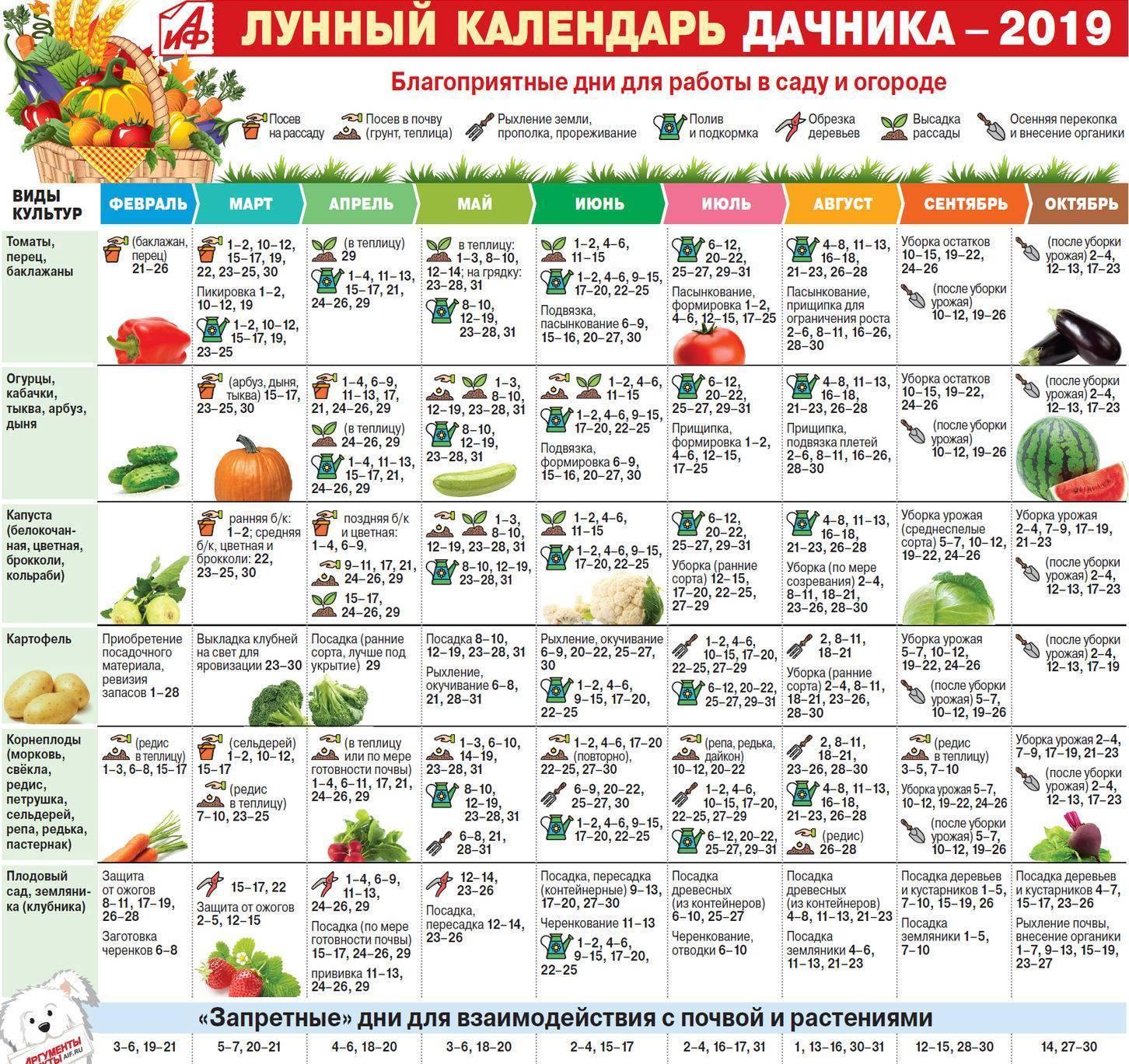 Календарь садовода, 9 март 2017