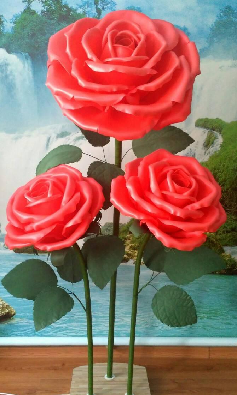 О сортах больших роз: описание и характеристики самых крупных и пышных