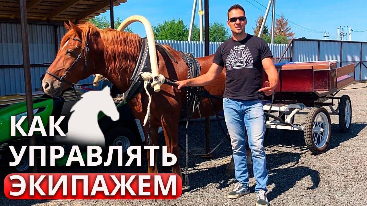 Сани для лошади: конструкция и изготовление