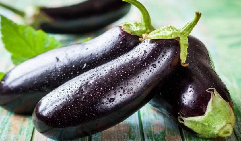 9 лучших сортов баклажанов для теплицы