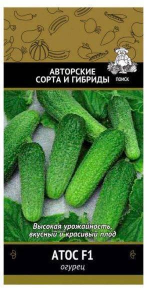 Описание сорта огурцов атос, особенности выращивания и ухода