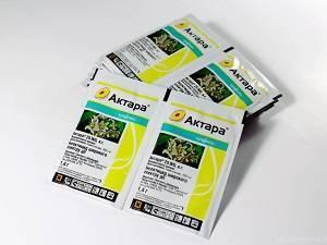 Инсектицид актара для комнатных растений: инструкция по применению препарата нового поколения для борьбы с паразитами различного рода