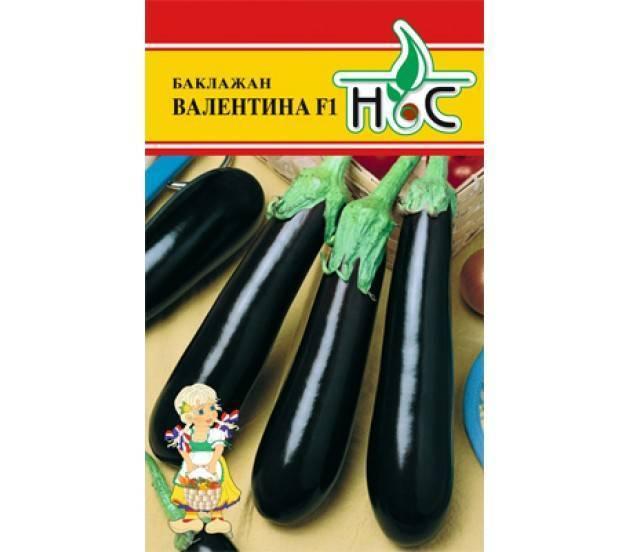 Баклажан балагур — высокоурожайный сорт кистевых баклажанов отечественной селекции