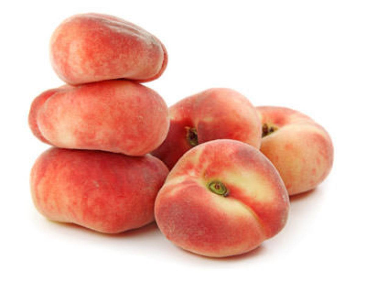 О инжирном персике: описание плоского персика, выращивание и уход