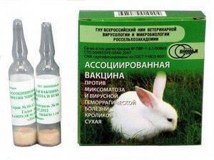 Прививки для кроликов когда и какие делать