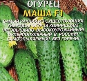 Сорта огурцов: описание лучших огурцов для промышленного и домашнего выращивания (105 фото)