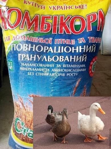 Сколько корма нужно для выращивания одной утки?