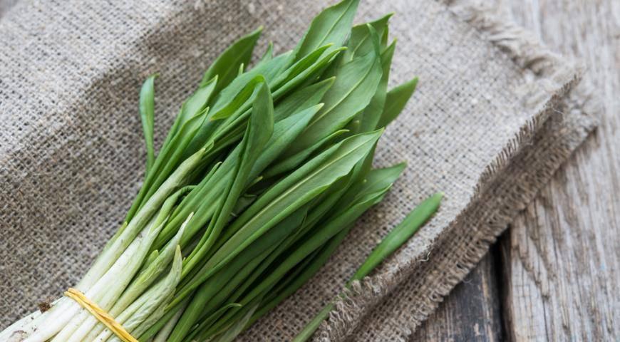 Черемша — выращивание и полезные свойства