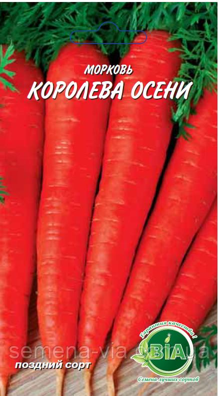 Характеристики сорта моркови «королева осени»