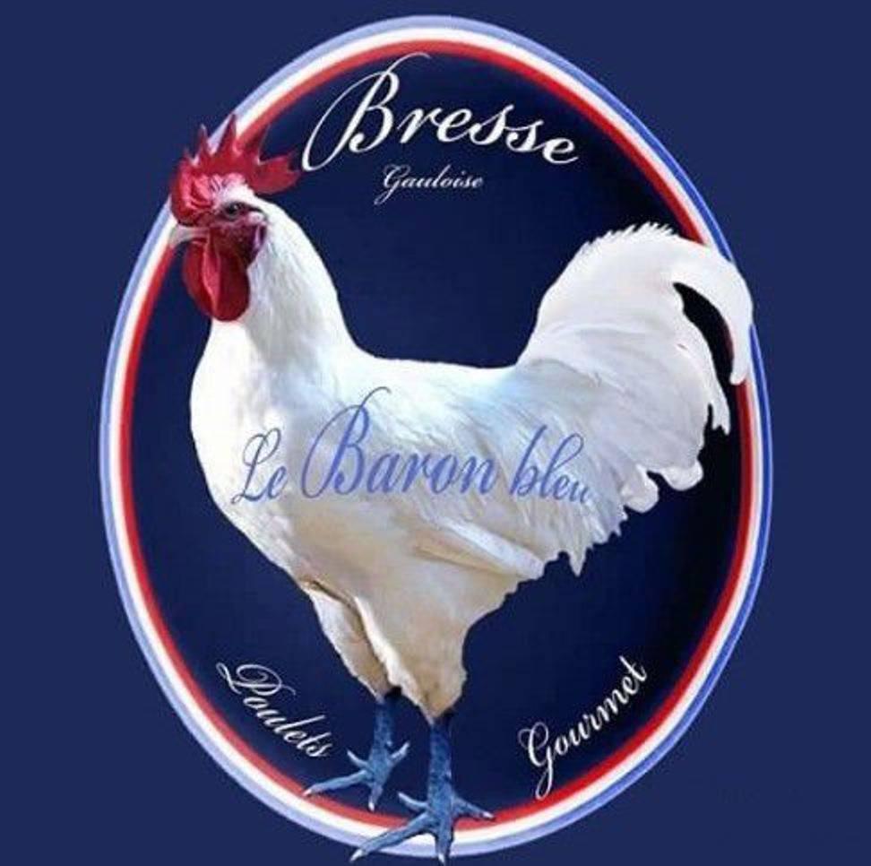 Особенности пород белых кур