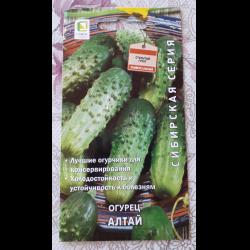 Сорт огурцов «алтай»: фото, видео, описание, посадка, характеристика, урожайность, отзывы