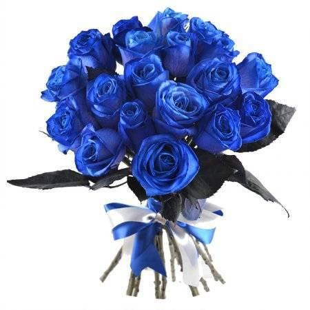 Как выращивают синие розы
