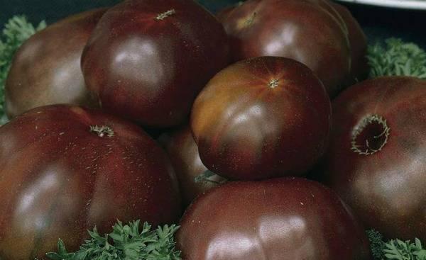 Томат арбуз