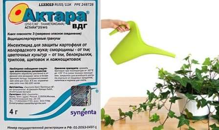 Как применять инсектицид Актара для плодовых деревьев и кустарников