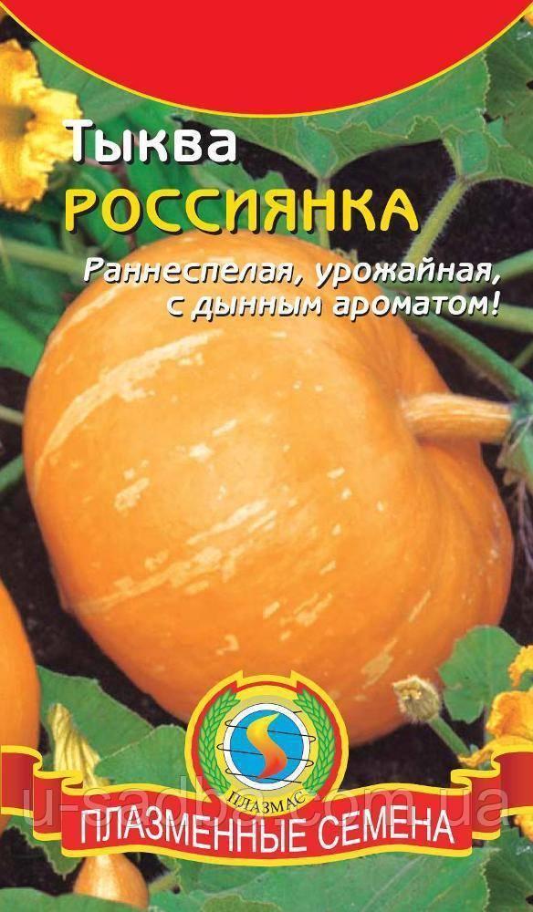 Польза и вред тыквы для здоровья человека. технология выращивание в открытом грунте: посадка семенами и рассадой, уход и вся агротехника